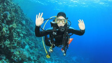 Scuba Diving in the Florida Keys