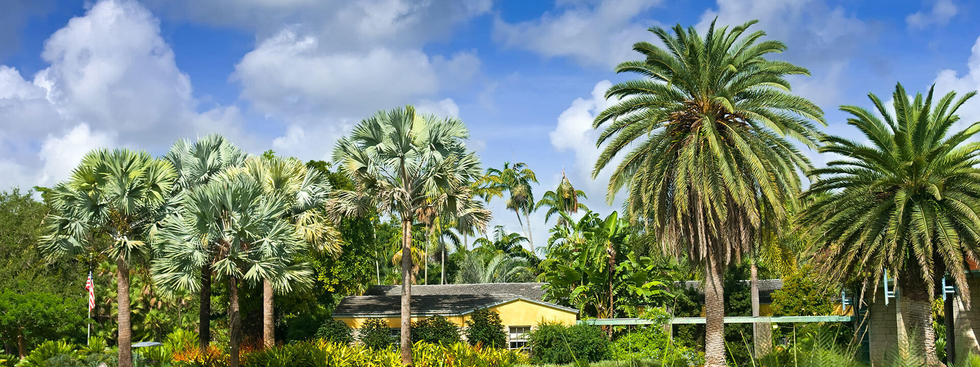 Top Things To Do In Miami Gardens