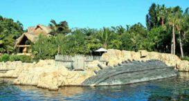 Palm Cove Blvd Panama City Beach Fl